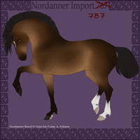import design 787 by BaliroAdmin