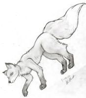 Fox Sketch 1-14-11 by sporkyd00m