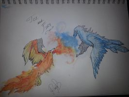 Ice and Fire by WolvesHowl457