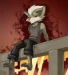 Wolf on a Wall by SupaCrikeyDave