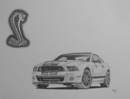2013 Ford Mustang GT500 Cobra by chadvstudio