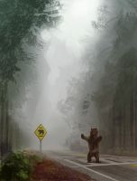 Bear Crossing by FinalKnight6
