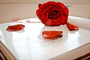Red Rose by princess-reme