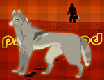 .: Kevin Reference Sheet 2015 :. by MorningAfterWolf