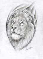 Lion drawing by primitive-art