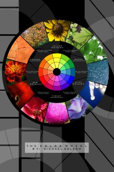 Natural Color Wheel 02 by yenom