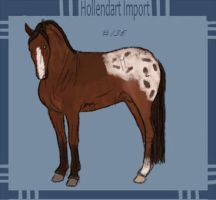Hollendart Import 137# by Lyd2000