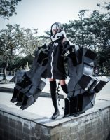 BRS: Strength! by nurFajar