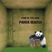_Save Panda Bear_ by drearetro