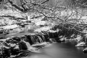 Snowy River - BW by Spyder-art