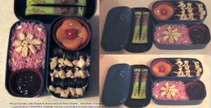 Bento 1 by SailorPluto-the-Pyro