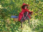 Little Red Riding Hood by Rhissanna