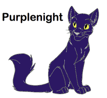 Purplenight Cat Breedable by WarriorCatLuver123