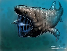 Megalithic Basking Shark - shark week sketch 5 by dsilvabarred