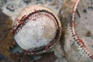 Play Ball by Fitzmx6