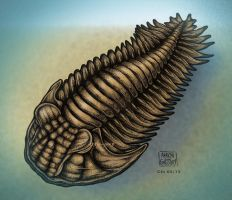 Trilobite by Clu-art