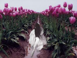 Tulipan by Flore