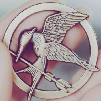 Mocking Jay II by perfect-dream