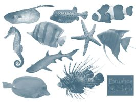 fish-brushes Photoshop by aswad-hajja