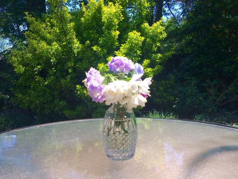 Vase of Flowers by Auroha