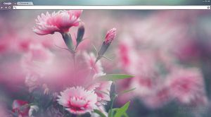 Ethereal nature Google Chrome theme by Brianditalistina