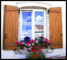 Window and Flowers by Kayley1590