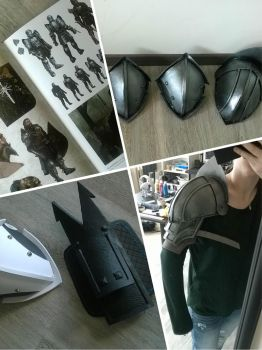Blackwall - Dragon Age Inquisition - Progress by VickyLigt