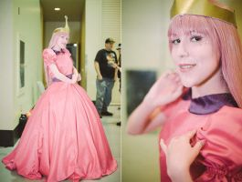 Candy Princess Bonnibel Bubblegum by BiZria