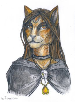 Khajiit Witch by Iskyeller