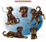 Acacia's Daredevil - Obedience Titles by Bafa
