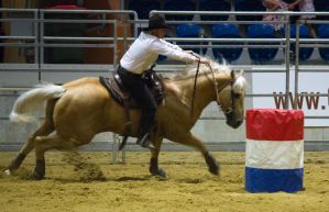STOCK 2013 Rodeo-254 by fillyrox