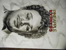 Seth Rogan Pineapple Express by StarvingArtist513