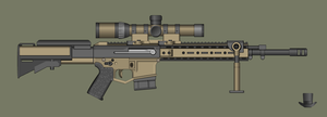 Custom AR-15 DMR by PatTheGunartist