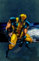 Wolverine by commanderlewis