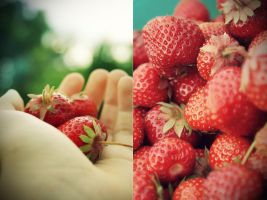 Strawberry Fields by graviloquence