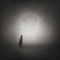 Lost in Desert II by Alshain4