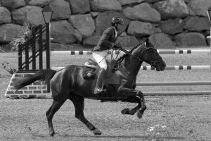 FEI WORLD CUP JUMPING 2015_BROMONT_18 by godefroy1096