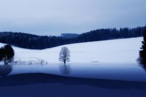 premade background - 010 Winter by thalija-STOCK