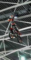 Fmx8 by MetallerLucy