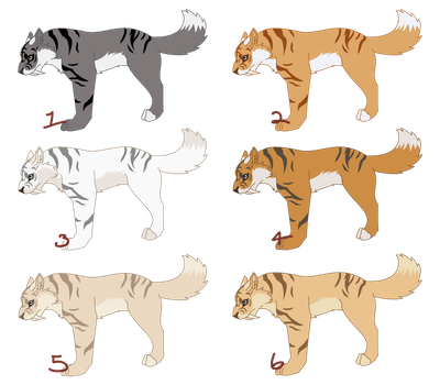 Saber-Wolf color ideas NOT ADOPTABLES by Kaia-Anevay