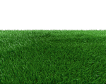Grass Field Png by dabbex30