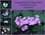 Garden Phlox Stock Pack by Mouse-Stock