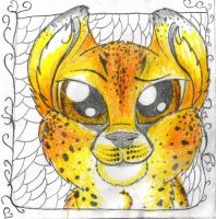 Cheetah by luckylucy99