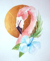 Flamingo by alice-time