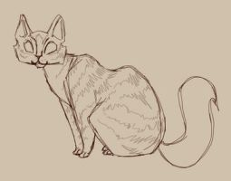 Tabby Cat GIF by Ospreyghost13