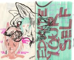 Girls who run with the wolves by chappy-lips