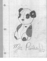 MY panda by eires666