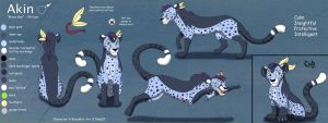 Akin Complex Ref Sheet - Commish by Nala15