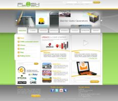 Web presentation PSD layout for a client by djnick2k
