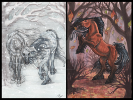 Equestrian Fall and Winter by Works-by-Tahirah